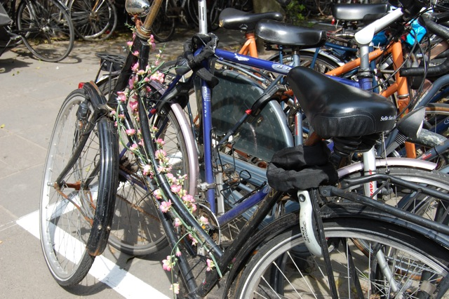 デコチャリその2|自転車を花で飾る|オランダ