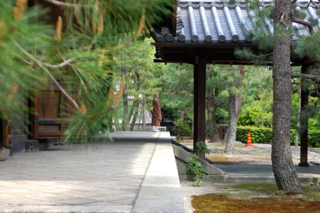 Daitoku-ji, Koto-in