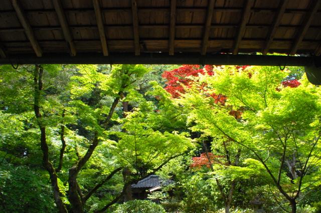 Kohtoh-in, Daitoku-ji, Kyoto
