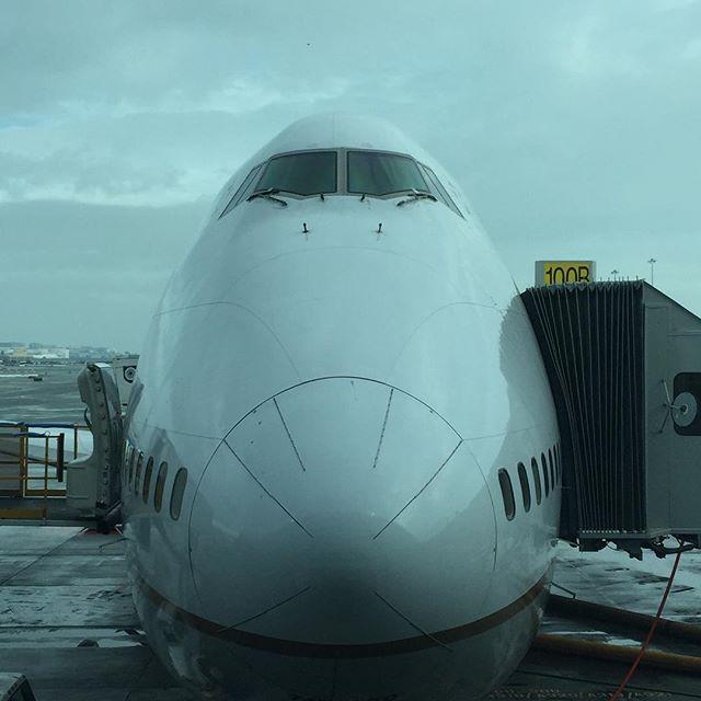 B747-400と正面から向き合う
