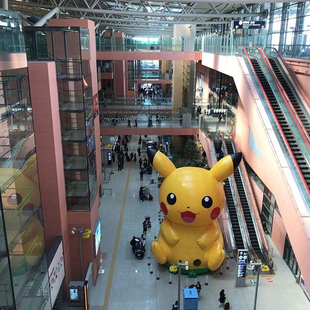 親指でモンスターボール投げそうになった。 #ピカチュウ #pikachu