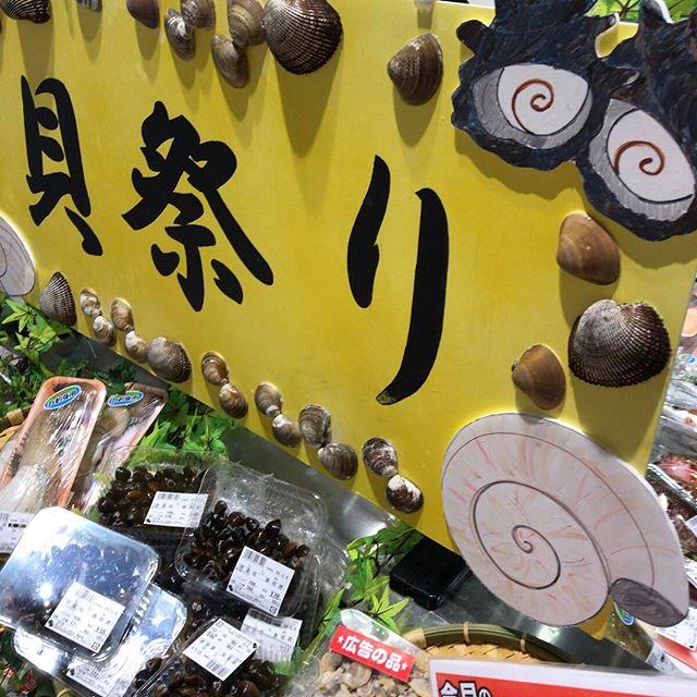 スーパーの貝売り場の手作りポップ。でもアンモナイトはもちろん売ってない。