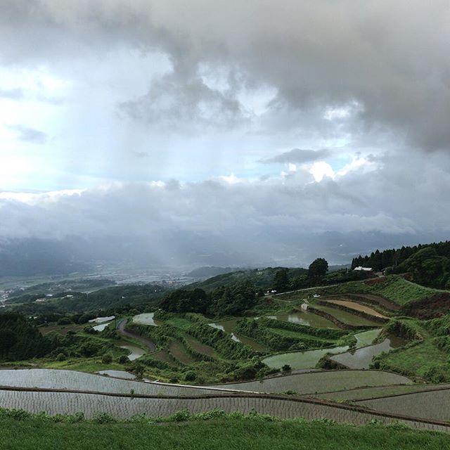 通勤帰り。ここは標高381mだそうです。田植えも終わって梅雨本番です。