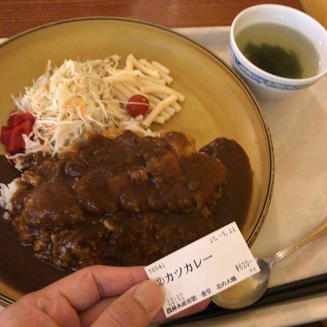 よその社食(?)楽しい。カツカレー620円。かなり大盛りです。