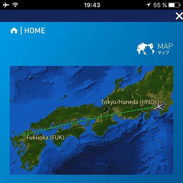 ほほう、自分のスマホでこの見惚れる地図が見られるのねん。#ana