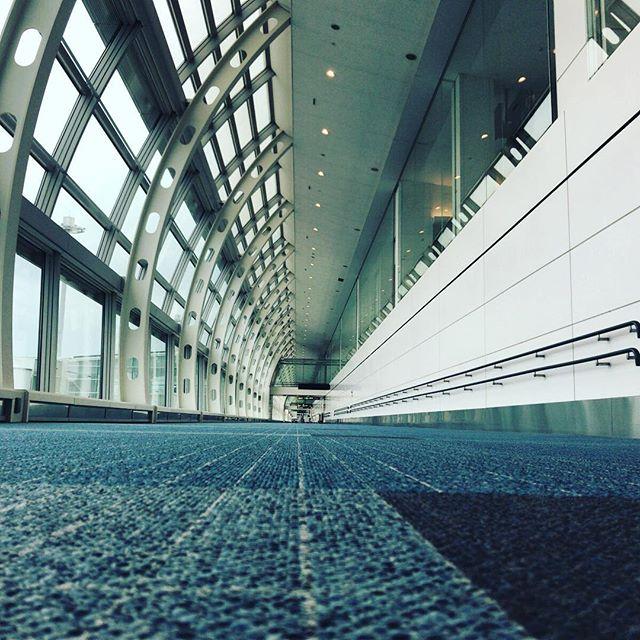 羽田空港で写真撮って人が写ってないの初めてかも。 #今日の一点透視法