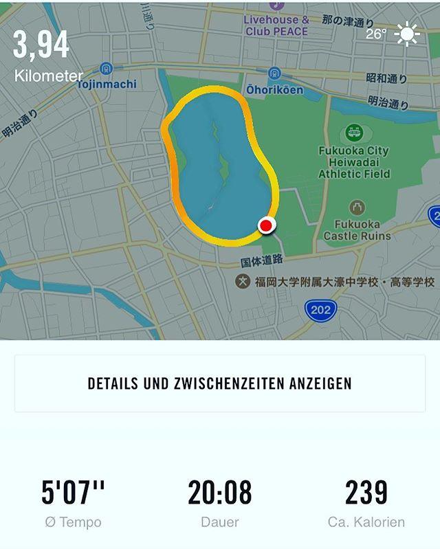 1週間ぶりの運動。大濠公園を2周したよ。約4kmのランニングでした。