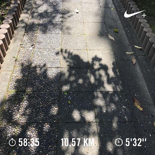 天気いいねえ。なんとか午前中にランニング終了。