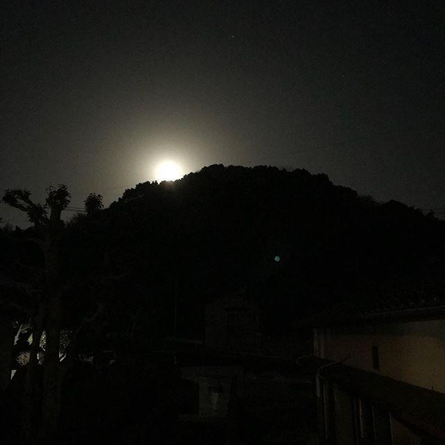 月が昇ってくるよ!Moonrise!