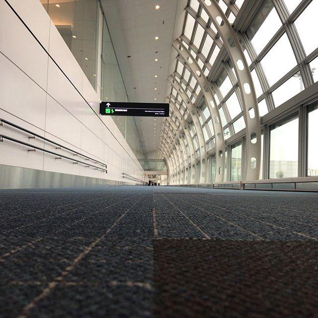 ANAの皆さん、今日も羽田空港の端っこに駐機してくれてありがとうございます。おかげで一点透視図法撮れました。#今日の一点透視図法