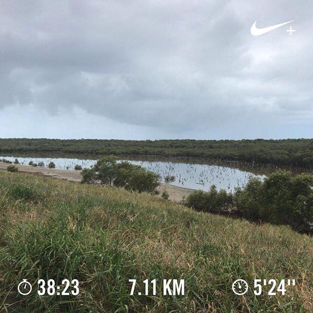 探検気分で走りに行ったら、入江のような池のようなところにたどり着きました。