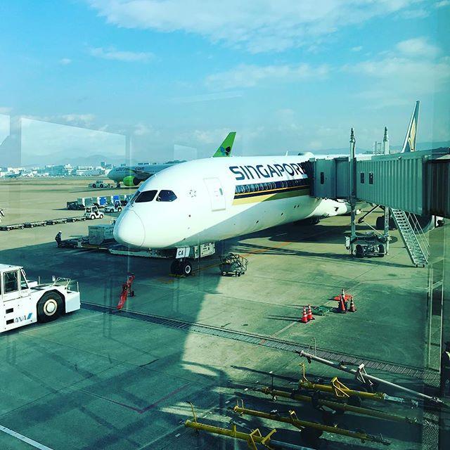FUK-SIN. 今年初の旅へ。まずはシンガポールに向かいます。