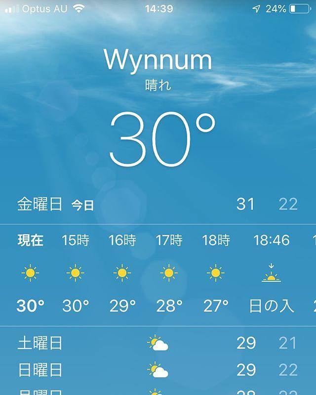 今日は本格的に夏らしい天気