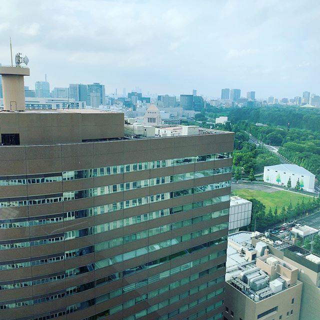 霞ヶ関の高層階で打ち合わせ。国会議事堂がぴょっこり。
